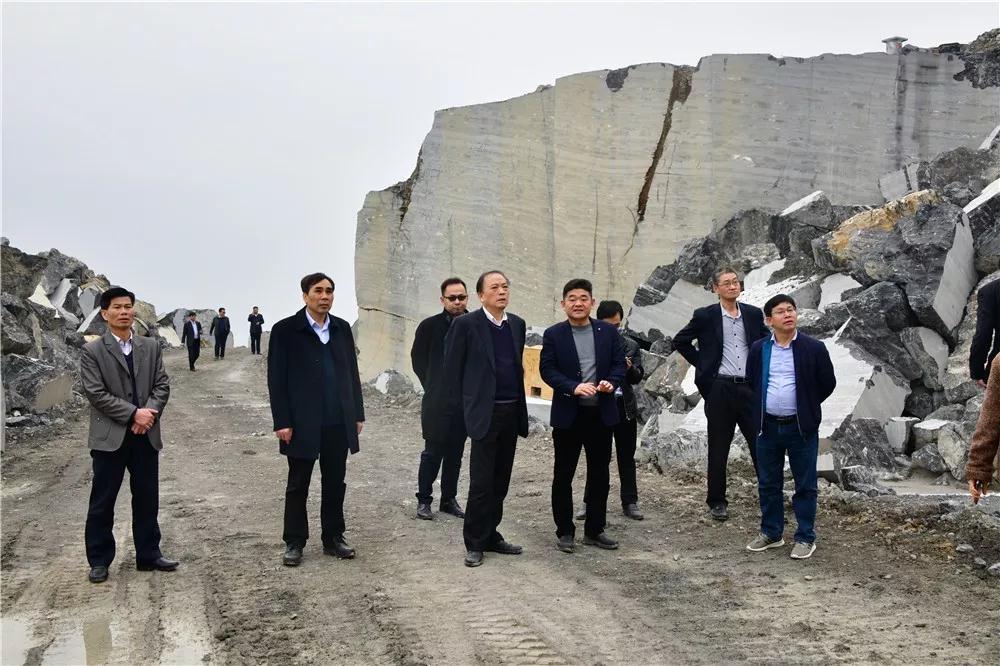 中国煤炭地?#39318;?#23616;领导到广西?#36152;?#32771;察石材产业